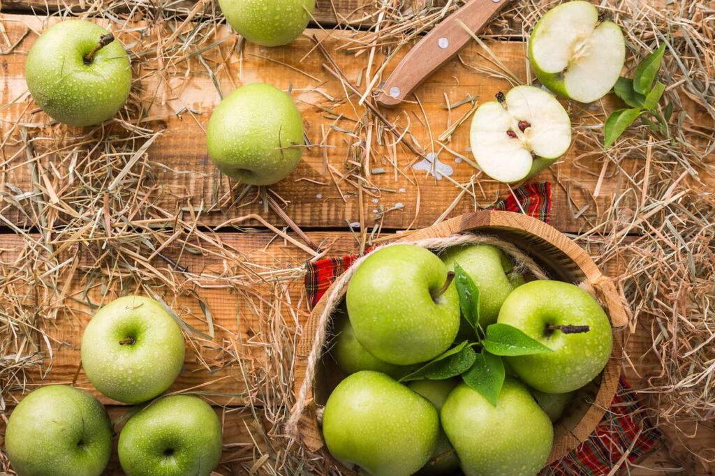 Гречнево-яблочная диета