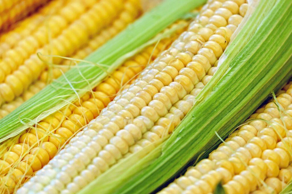Кукуруза консервированная рецепт